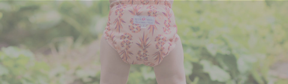 Applecheeks reusable diapers