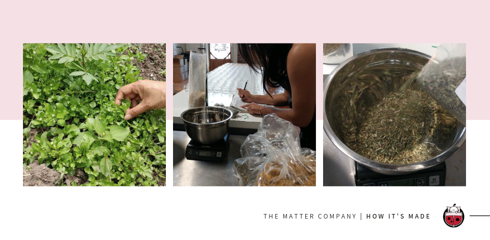 The Matter Company | How It's Made