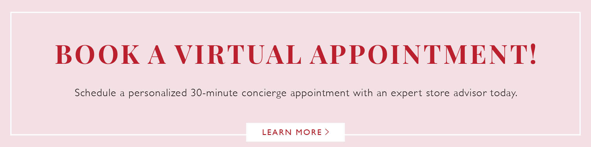 Snuggle Bugz Virtual Appointments
