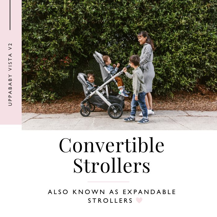 UPPAbaby VISTA V2 Convertible Stroller with mom and 2 sons