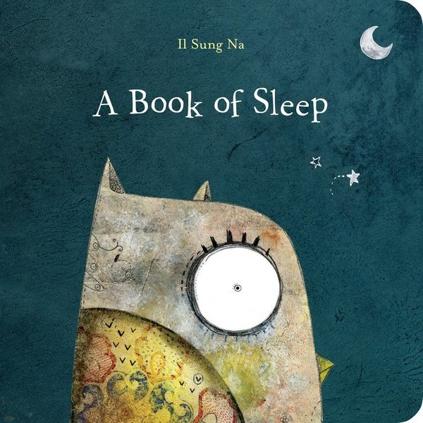 View larger image of A Book of Sleep