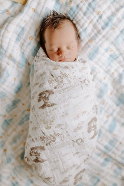 View larger image of Harry Potter Swaddle