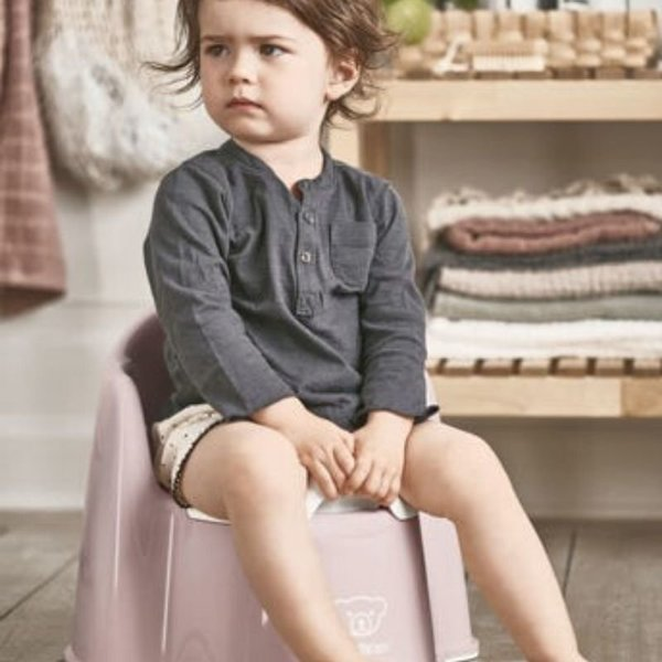 View larger image of Potty Chair