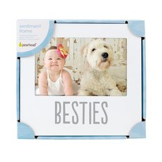 Besties Sentiment Frame