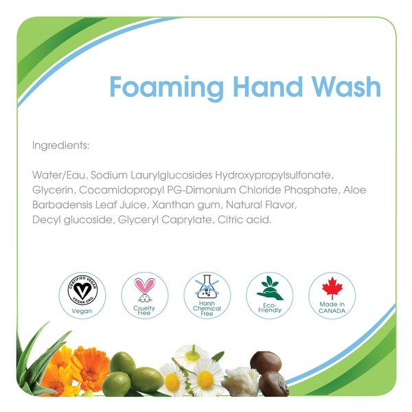View larger image of Foaming Hand Wash - 300 mL