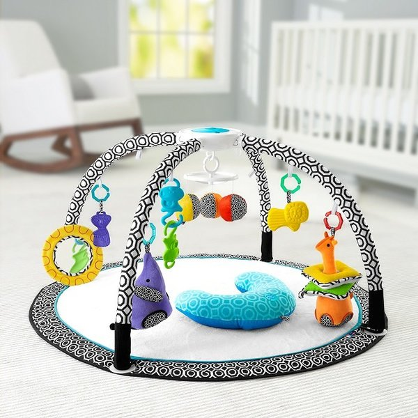 View larger image of Jonathan Adler - Sensory Activity Gym
