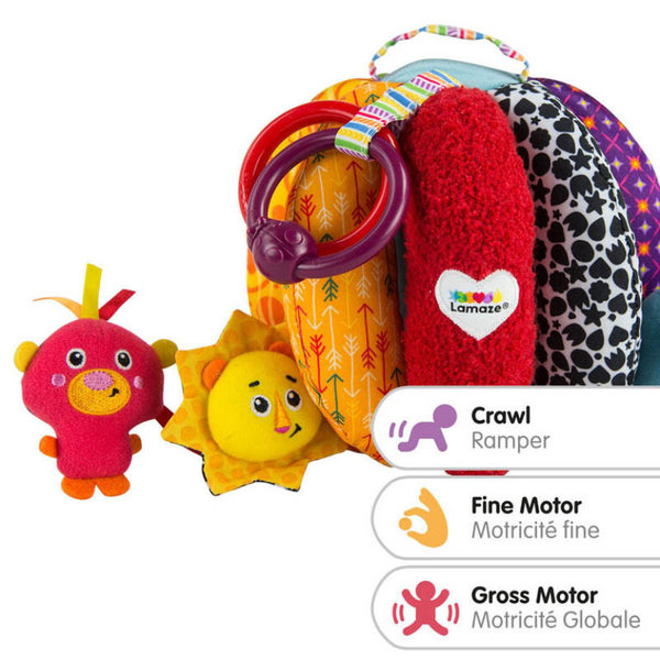 View larger image of Grab & Hide Ball