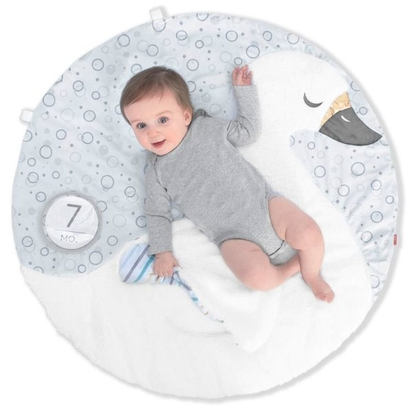 View larger image of Little Swan Playmat