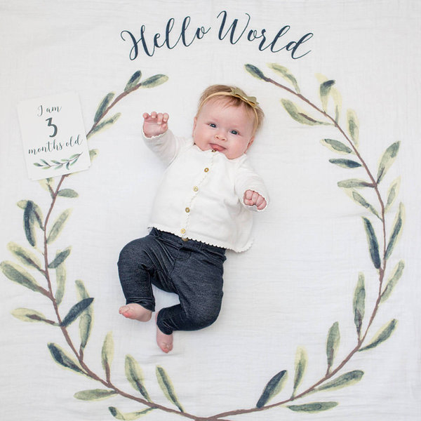 View larger image of Milestone Blanket & Cards