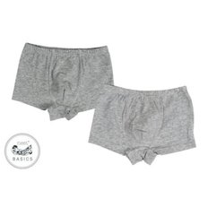 Boys Boxer Briefs Underwear - 2 Pack