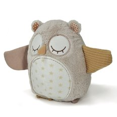 Nighty Night Owl-Smart Sensor