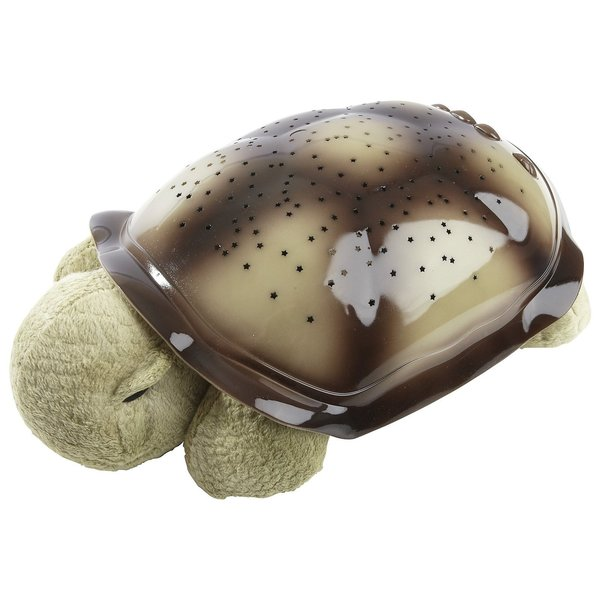 View larger image of Twilight Turtle (Mocha)