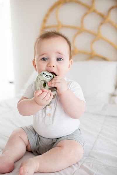 View larger image of Sloth Silicone Teether with Holder