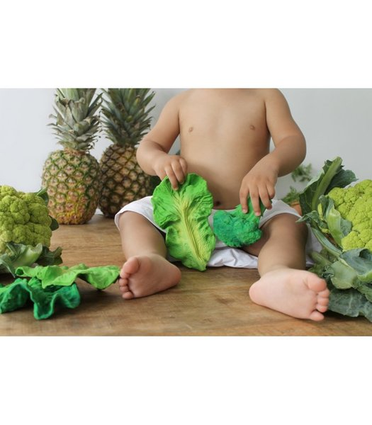 View larger image of Kendall The Kale Teether