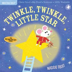 Twinkle Twinkle Indestructible Book